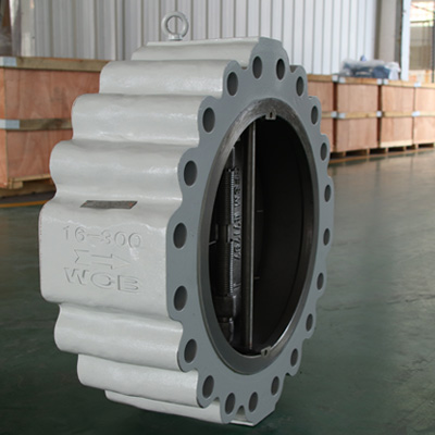 Solid Lug Wafer Check Valve