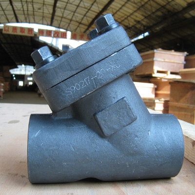 Forged Y Check Valve